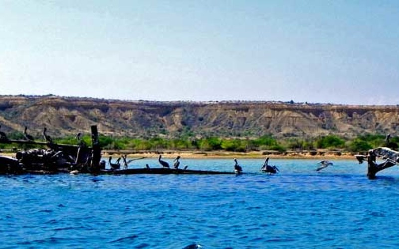 El cañón de Las Calderas: paraíso paleontológico de la Isla de Cubagua