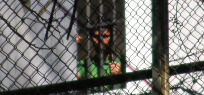 Leopoldo López:  ¡Levanta la huelga de Hambre!