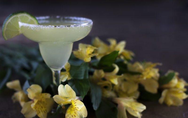 ¡A celebrar el Día Nacional del Tequila!