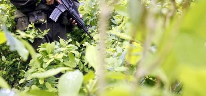 Mafias colombianas aún controlan tráfico de cocaína de la costa este
