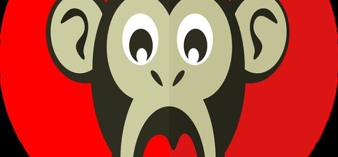2016 año del Mono rojo de fuego ¿Qué nos trae?