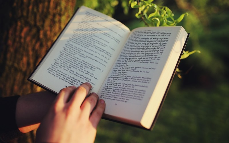 Lectura agripada = lectura fragmentada