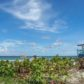 Miami fabulosa: así la capta el lente de Evelyn Díaz
