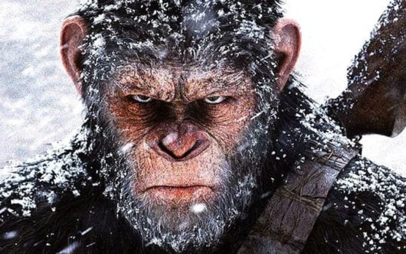 """""""El planeta de los simios: la guerra"""" estrena tráiler"""