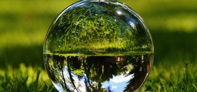 Cómo se forma una oreja de cristal, un poema de Eduardo Escalante