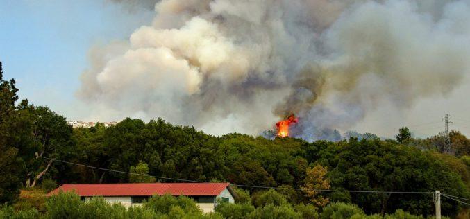 California: van 5 muertos por incendio forestal imparable