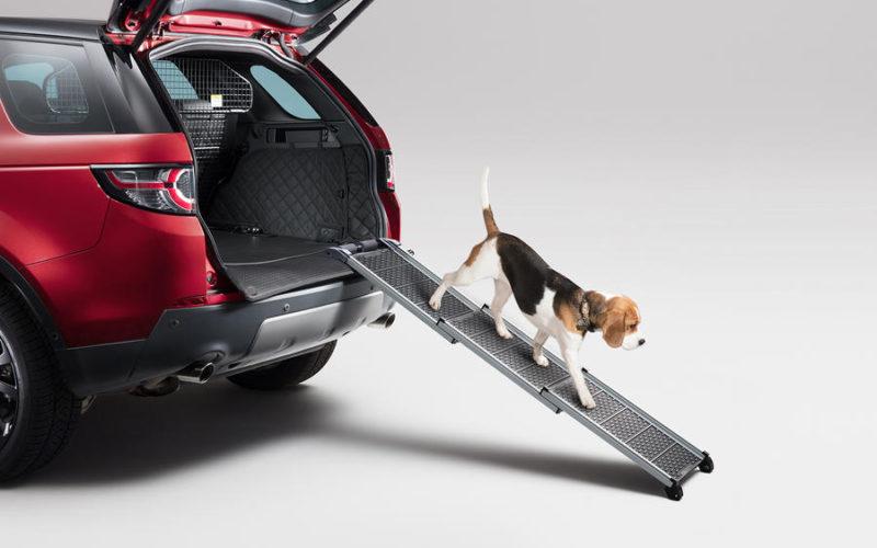 Land Rover lanza línea de accesorios para mascotas