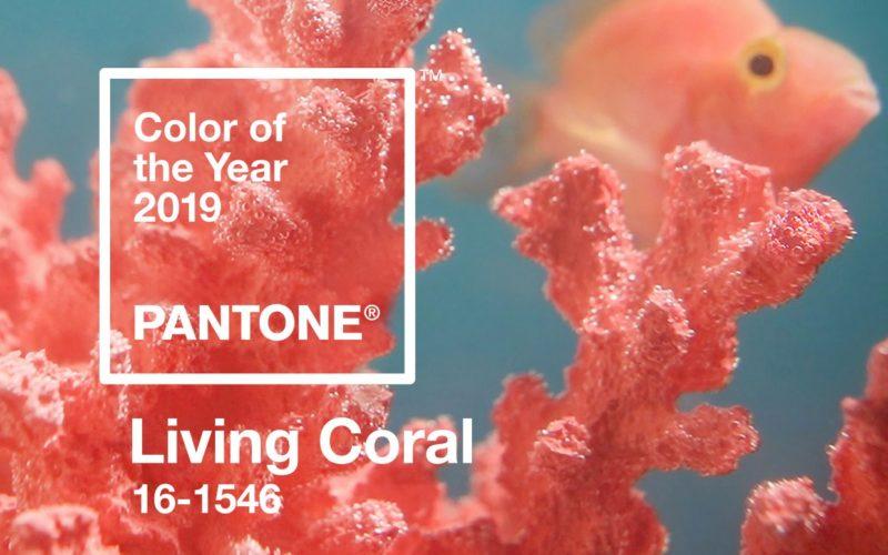 2019 ¡A todo coral!