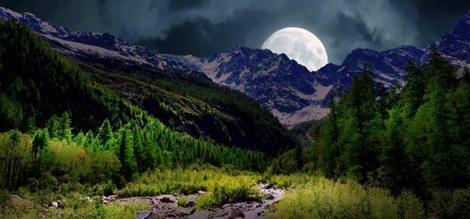 Despertando cuando la luna nace del bosque, un poema de Eduardo Escalante