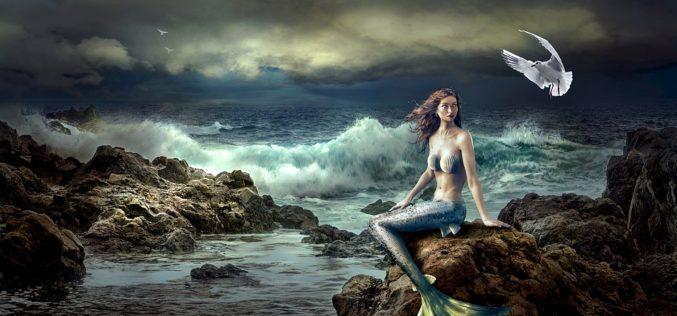 Solo un canto de sirena, un poema de Eduardo Escalante