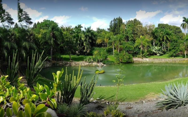 Parrot Jungle – Pinecrest Gardens: un oasis en Miami
