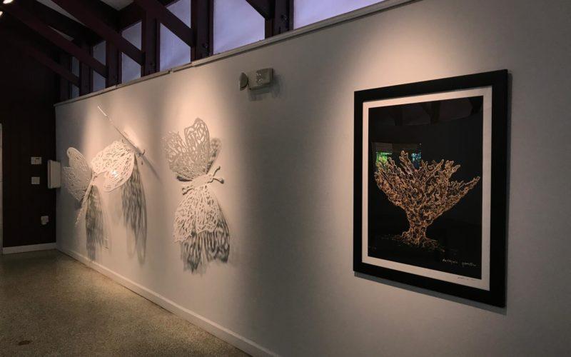 """The Elements of Art"" se exhibe en Pinecrest Gardens"