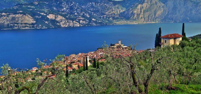 Monte de olivo imaginario, un poema de Eduardo Escalante
