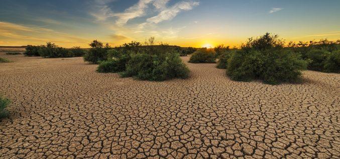 Tierra baldía, un poema de Eduardo Escalante