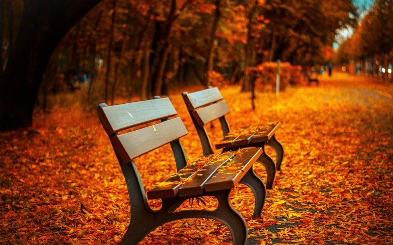 Horas de otoño, un poema de Eduardo Escalante